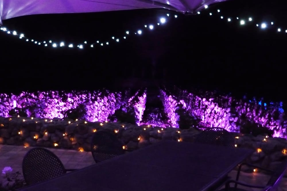 mood-lighting-the-vines-at-craggy-winery